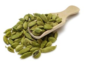 Elettaria cardamomum Maton