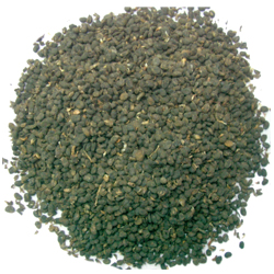 Psoralea corylifolia Linn