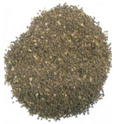Sida cordifolia Linn