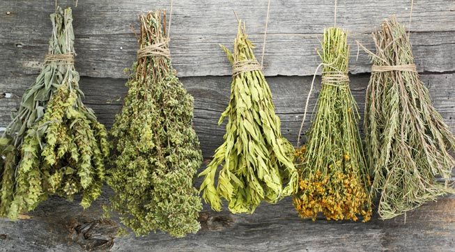 Dry-Dehydrated-Herbs-Hanging-Upside-Down-Wood-Surface
