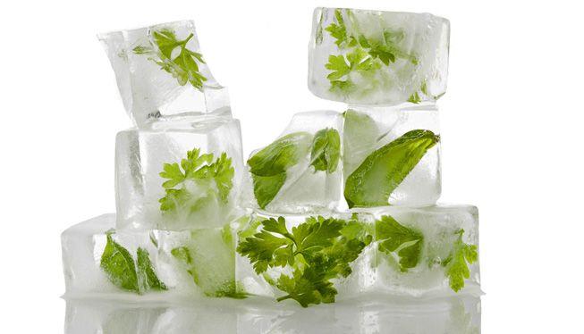 Herbs-Frozen-Ice-Cubes