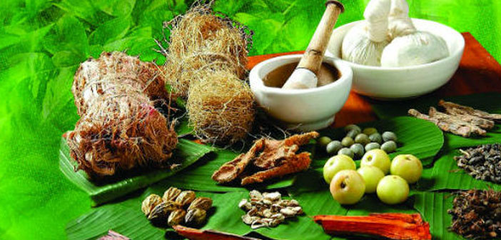 Herbs India Herbs Journal Of Herbs List Of Herbs Types Of